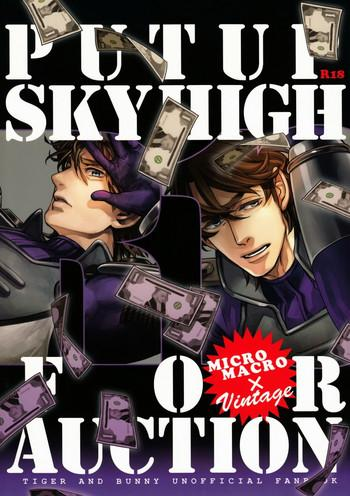 put up skyhigh for auction cover